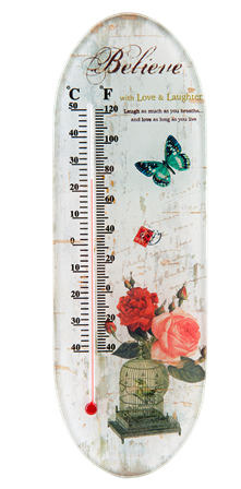 "Thermometer Glas ""Believe Rosen"" 7x22 cm Clayre & Eef"