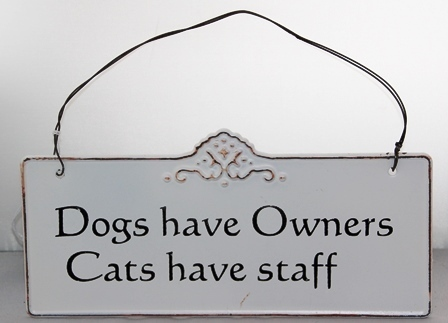 "Metallbild - Blechbild ""Dogs have Owners Cats have staff"" creme"